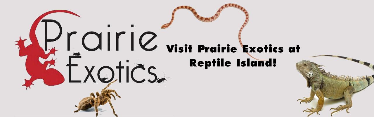 Prairie Exotics Banner