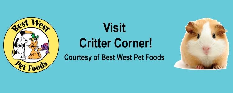 Critter Corner Banner V2