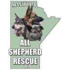 MANITOBA ALL SHEPHERD RESCUE